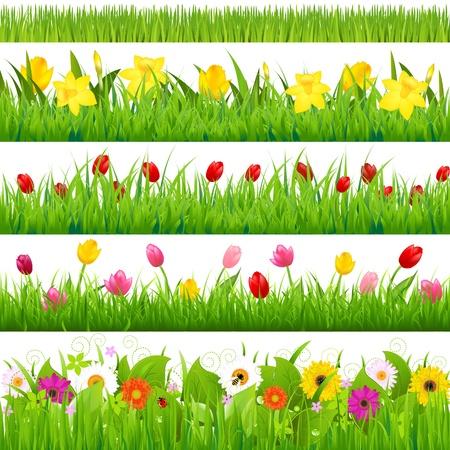 cenefas flores: Fronteras flor del set Ilustración Vectores