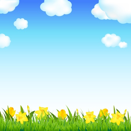 tulips in green grass: Flower Meadow With Grass And Cloud Illustration  Illustration