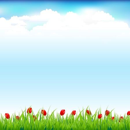 природа: Зеленый пейзаж с травой и Красный тюльпан Иллюстрация