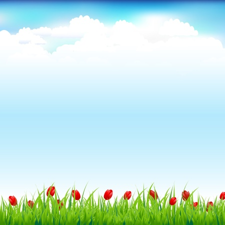 Green Landscape With Grass And Red Tulip Vector
