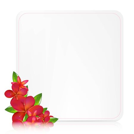 pink plumeria: Blank Gift Tag With Pink Frangipani, Vector Illustration