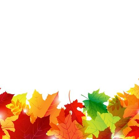 fall down: Autumn Border, Isolated On White Background Illustration Illustration