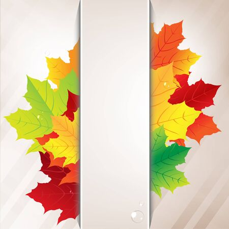 Autumn Composition From Leaves And Paper Banner Illustration Vector
