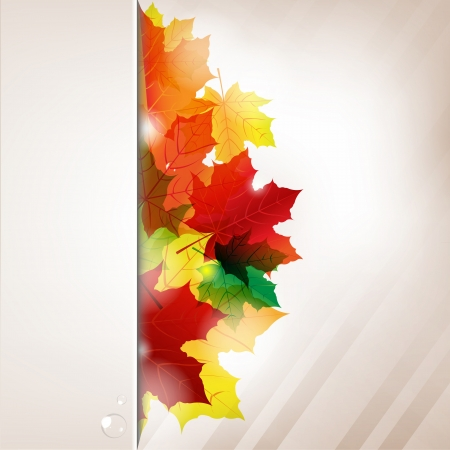Autumn Composition From Leaves And Paper Banner With Water Drop Illustration Vector