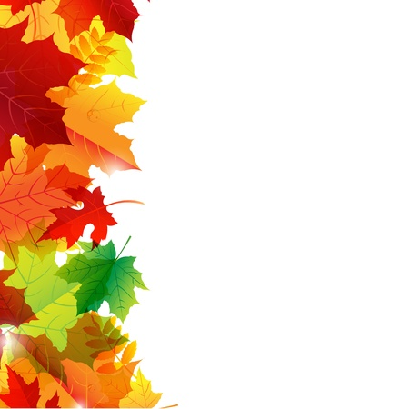 Autumn Leaves Border, Isolated On White Background, Vector Illustration Vector