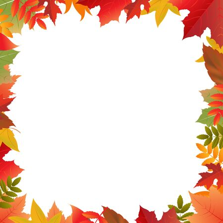 fall leaves border: Color Autumn Frame, Isolated On White Background, Vector Illustration Illustration