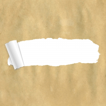 Package Paper Torn With Gradient Mesh Vector