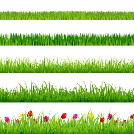 herb garden: Big Green Grass And Flowers Set With Gradient Mesh, Isolated On Red Background, Vector Illustration