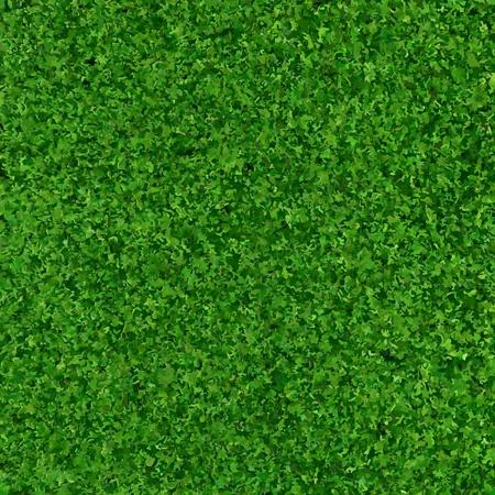 Green Grass Background Texture, Vector Illustration