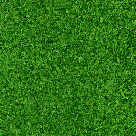 Green Grass Background Texture, Vector Illustration