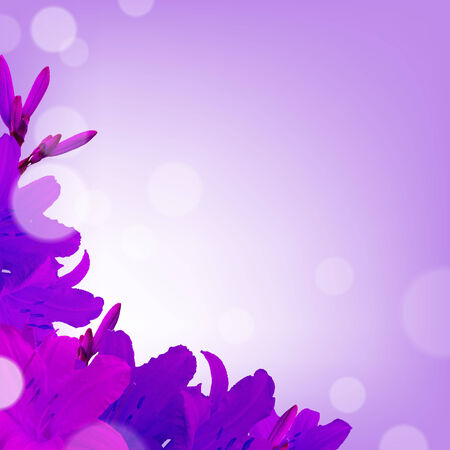 outdoor wedding: Violet Lilies, With Gradient Mesh Illustration Illustration