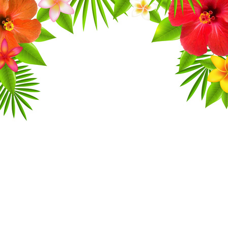 Tropical Flowers Border, With Gradient Mesh, Vector Illustration