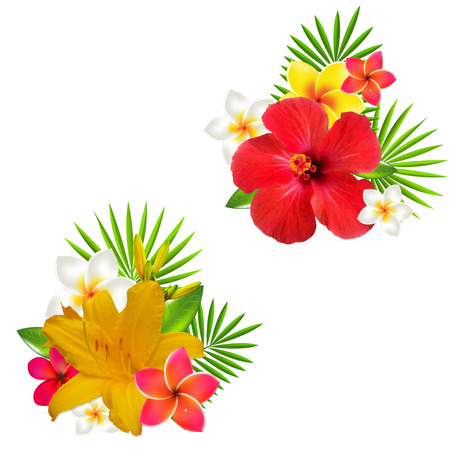 Flowers Set, With Gradient Mesh, Vector Illustration