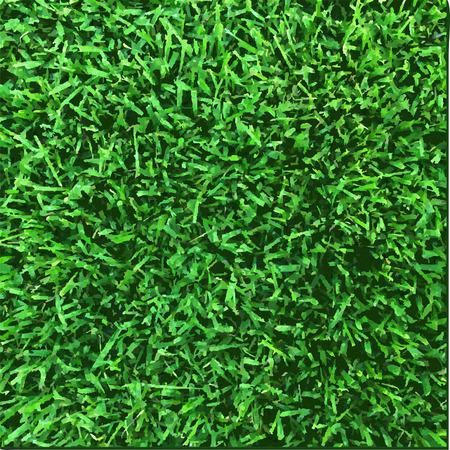 Grass Texture, Vector Illustration Illustration