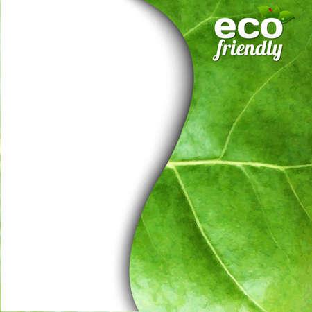 Green Leaf Texture, Vector Illustration Vector