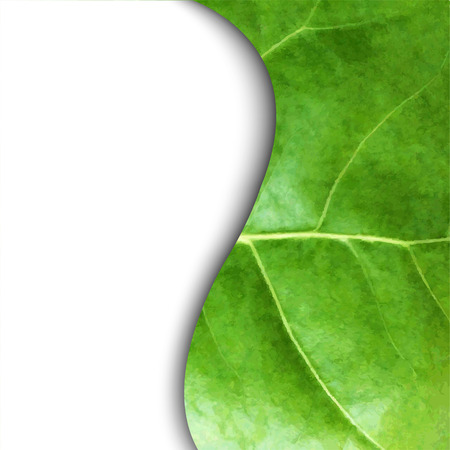 Leaf Poster With Gradient Mesh, Isolated On White Background, Vector Illustration