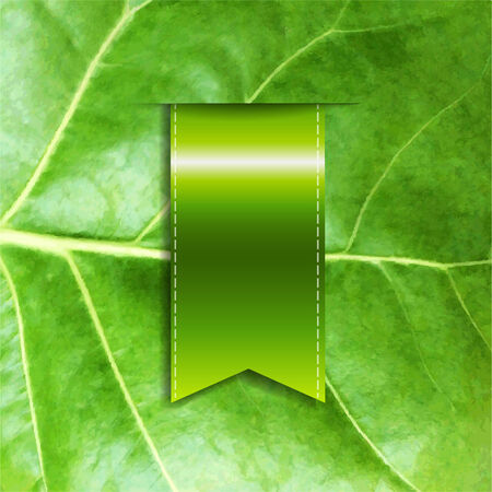 Green Leaf With Ribbon, Vector Illustration Vector