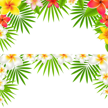 flores tropicales: Tropical Flowers Border Set, con malla de degradado, ilustraci�n