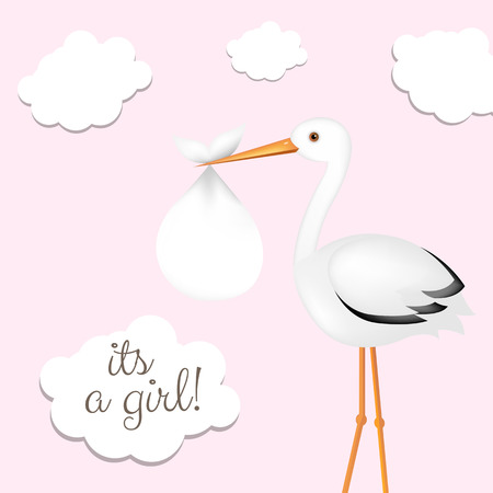 Stork With Girl Baby Card With Gradient Mesh, Vector Illustration Vector