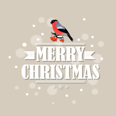 bullfinch: Vintage Christmas Card With Bullfinch With Gradient Mesh, Vector Illustration