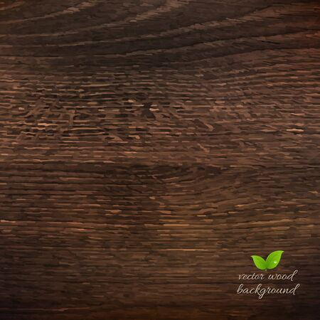 wooden vector mesh: Wooden Texture With Gradient Mesh, Vector Illustration