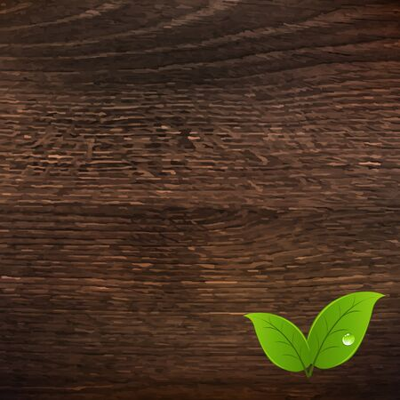wooden vector mesh: Wooden Texture With Leaf With Gradient Mesh, Vector Illustration
