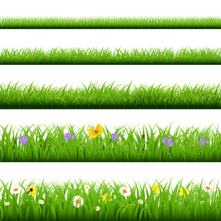 Big Grass Set With Butterfly And Flowers With Gradient Mesh, Vector Illustration