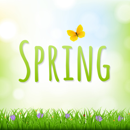 Spring Nature Background With Grass Border And Flowers With Gradient Mesh, Vector Illustration Vector