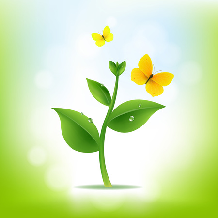 seedling growing: Plant With Nature Background With Gradient Mesh, Vector Illustration Illustration