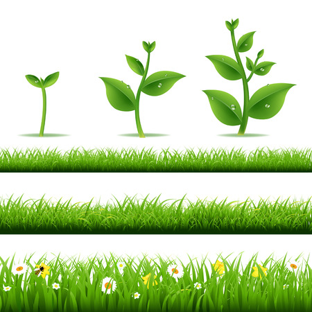 Big Grass Set With Plants With Gradient Mesh, Vector Illustration