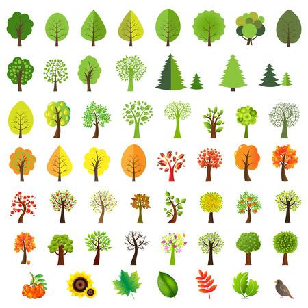 Big Set Trees With Gradient Mesh, Vector Illustration