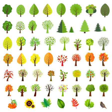 Big Set Trees With Gradient Mesh, Vector Illustration