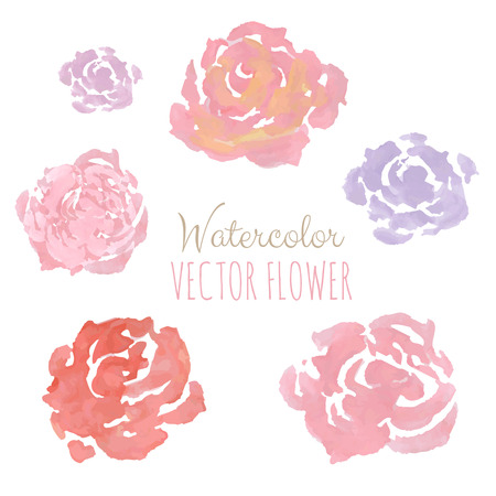 Watercolor Flowers, Vector Illustration