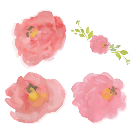Watercolor Pastel Roses, Vector Illustration 向量圖像