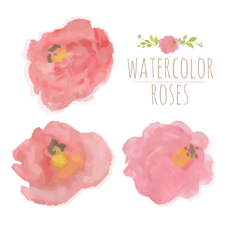 Watercolor Roses, Vector Illustration