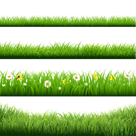 Grass Borders And Flowers Set, Vector Illustration
