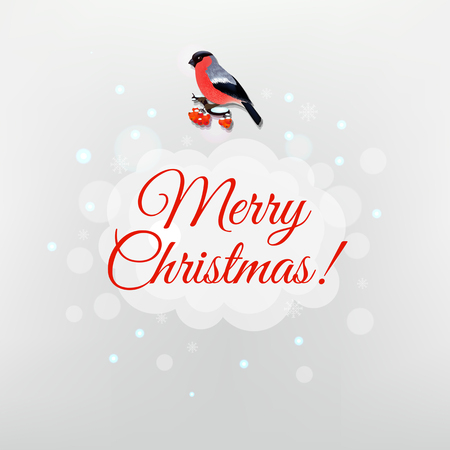 mountain ash: Christmas Poster With Bird With Gradient Mesh, Vector Illustration