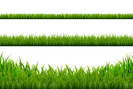 grass blades: Grass Borders Set, Vector Illustration