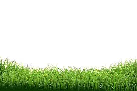 dessin: Green Grass frontière, illustration vectorielle