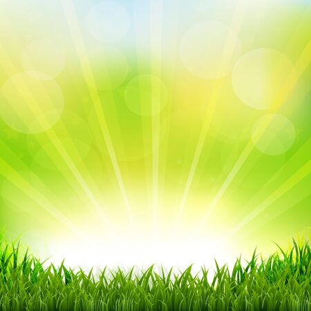 grass border: Green Background With Green Grass Border With Gradient Mesh, Vector Illustration