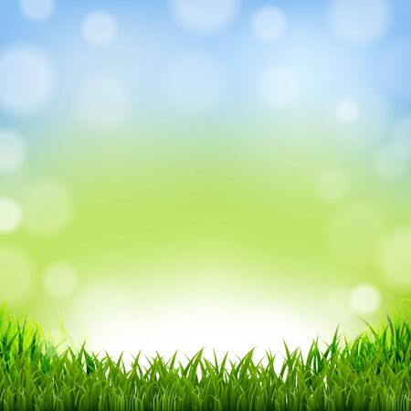 grass border: Easter Card With Grass Border With Gradient Mesh, Vector Illustration Illustration