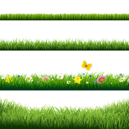 Grass Borders Set With Gradient Mesh Illustration