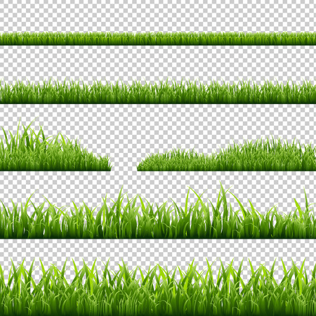 Grass Borders Set, Isolated on Transparent Background, Vector Illustration Vettoriali