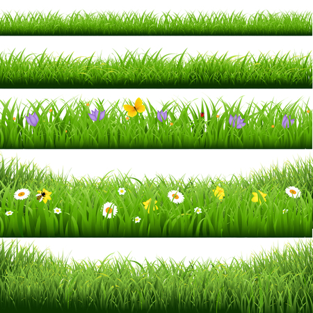 grass blades: Grass Borders Big Set With Gradient Mesh, Vector Illustration