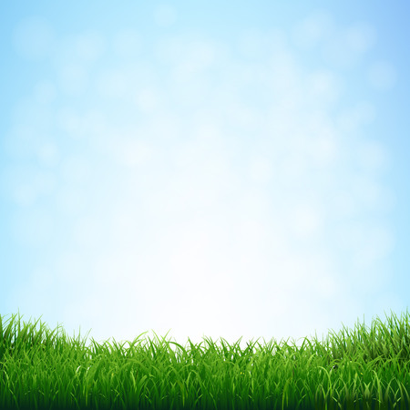Grass With Blue Sky With Gradient Mesh, Vector Illustration