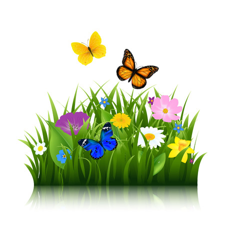 Summer Flowers With Butterfly With Gradient Mesh, Vector Illustration