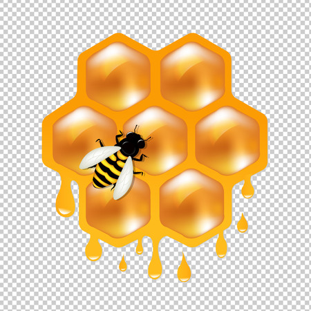 Honeycombs With Bee Gradient Mesh, Vector Illustration Illustration
