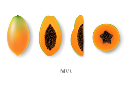 Papaya collection illustration.