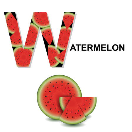 Letter W, Vector Illustration