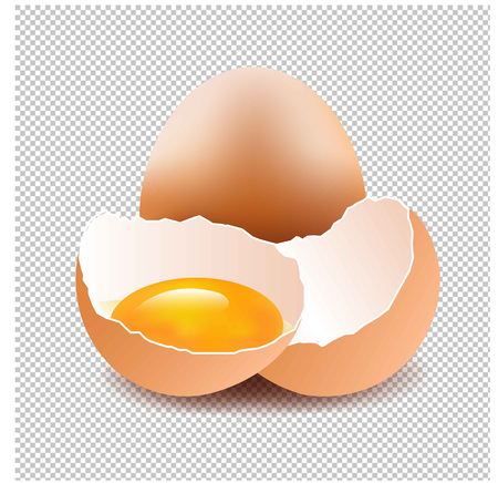 Eggs With Isolated Background Gradient Mesh, Vector Illustration.